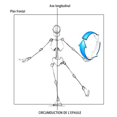 What Is L In Php by Sciences Du Sport Description Anatomique Du Mouvement