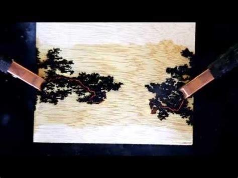 fractal lichtenberg figure wood burning  electricity