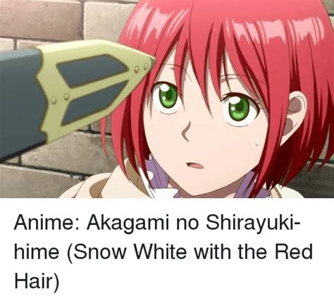 anime review snow white with the red hair heart of manga snow white with the red hair anime haven 25 best memes