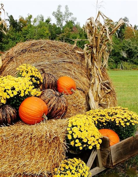 fall hay bale decorating ideas fall decorating ideas for outside and a story hay