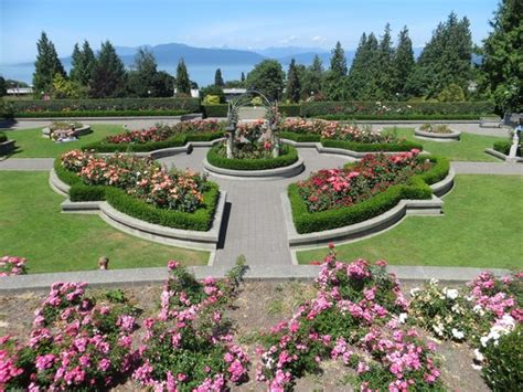 Ubc Botanical Garden Garden Of Columbia Picture Of Ubc Botanical Garden Vancouver