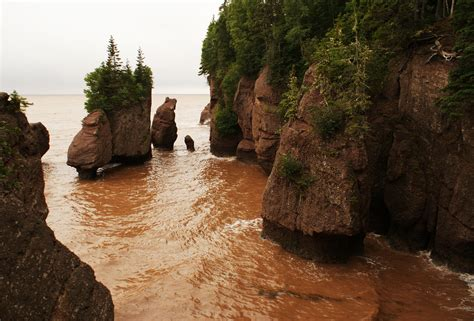 hopewell rocks  time  visit top tips