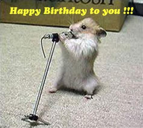 Animals Wishing Happy Birthday 70 Happy Birthday Anime Gif Images Meme And Filthy