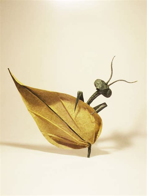 Realistic Origami - 24 incredibly realistic looking origami insects