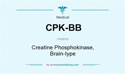 creatine meaning what does cpk bb definition of cpk bb cpk bb