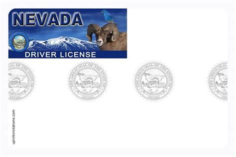 blank drivers license template free florida drivers license template multimediaosobo