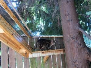 Simple One Story House Plans the new thing catios these backyard spaces are the cat