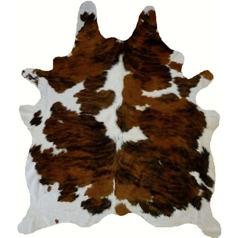 brown skin rug best 25 animal rug ideas on doll house diy doll house and room rugs