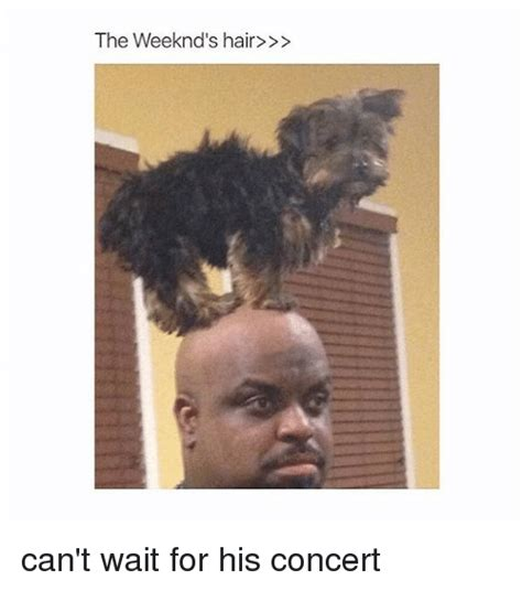 what is up with the weeknds hairdo what is up with the weeknds hair the weeknd cut his hair