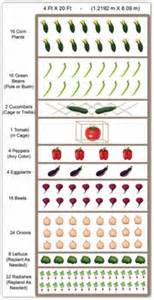 How To Layout A Vegetable Garden Raised Bed Vegetable Garden Layout Ideas