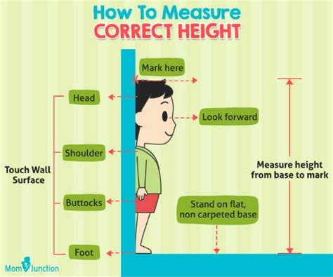 how to measure height child height predictor calculate how your child will be