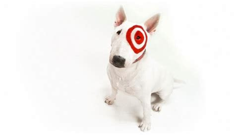 puppy target 1000 images about bullseye the target on gift cards cakes and