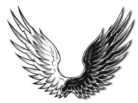 wallpaper sayap hitam hitam dan putih vektor sayap sayap vektor hitam dan putih