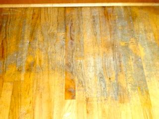 Best Way To Clean Hardwood Floors Vinegar Best Way To Clean Hardwood Floors Avoid Using Vinegar To Clean Floors