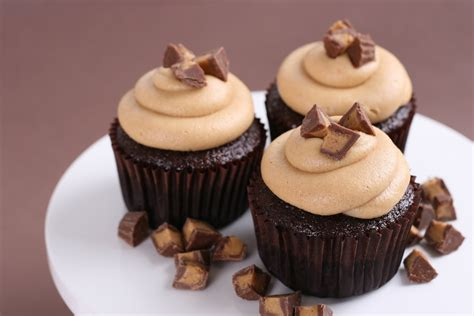 cupcake recipe chocolate peanut butter cupcakes recipe glorious treats