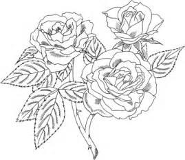 coloriage rosier floribunda ou rosier 224 fleurs en bouquets coloriages 224 imprimer gratuits
