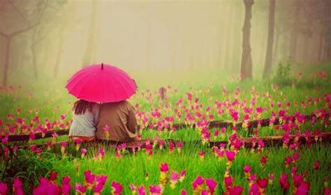 couple wallpaper with umbrella delightful diversions painting you with words