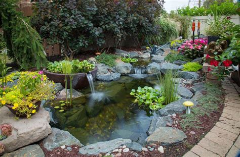 fish koi pond project  ideas nh chester