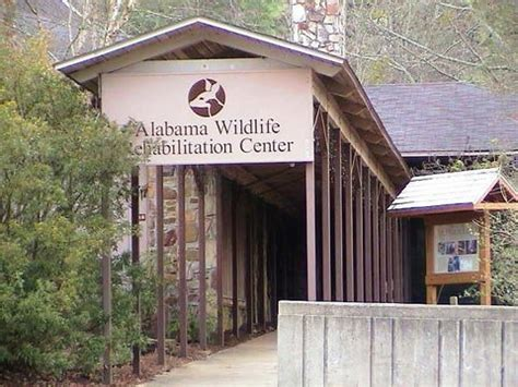 alabama wildlife center wikipedia