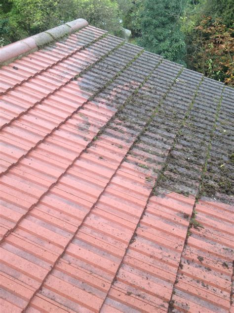 roof cleaning pressure pros