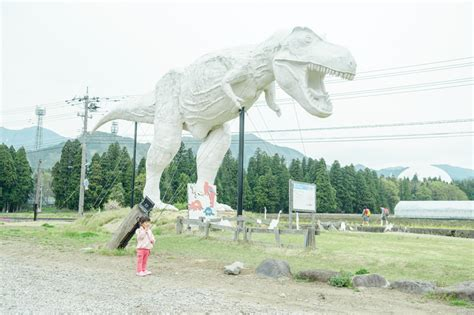 dinosaurs with special reference to the american museum collections books dinosaur museum fukui is japan cool travel and
