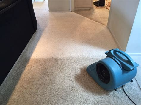 chem rug cleaning does chem carpet cleaning work cleaning area rugs at home steam carpet cleaning methods