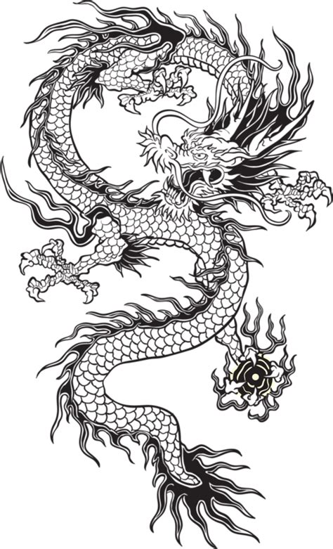 transparent chinese dragon black and white google