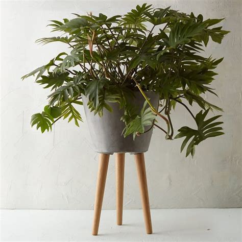 42 Unique Decorative Plant Stands For Indoor Outdoor Use Planter With Legs
