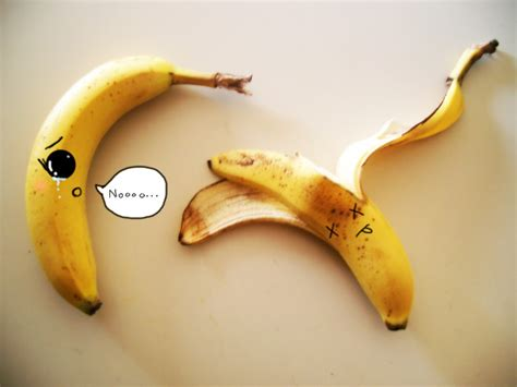 creative and funny food photos