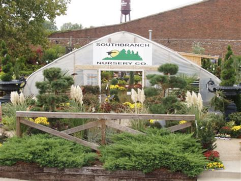 nurseries in franklin tn thenurseries