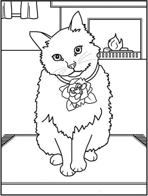 coloriage  chat adorable dessin gratuit  imprimer