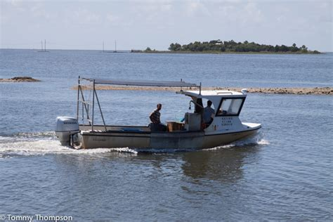 shrimp boat horseshoe get your seafood dinner quot fresh from the shrimp boat