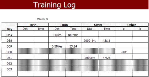 triathlon training log template kim s blog