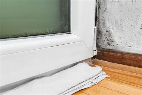 bedroom smells musty 8 tips for keeping bugs outside in the winter the pest