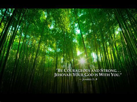 bambooforest 2013 jehovah witnesses yeartext for ipad, ipa