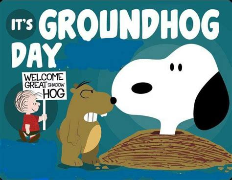 groundhog day quotes its groundhogs day pictures photos and images for