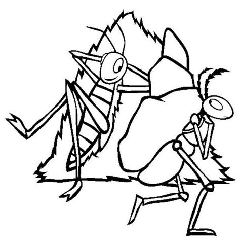 exle of excellent resume ant coloring page 2135 100 images ant coloring page