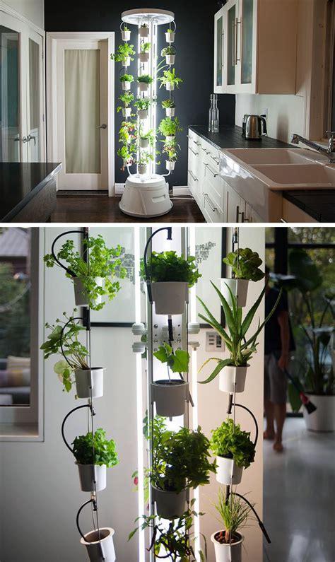 vertical vegetable garden ideas  beginners contemporist
