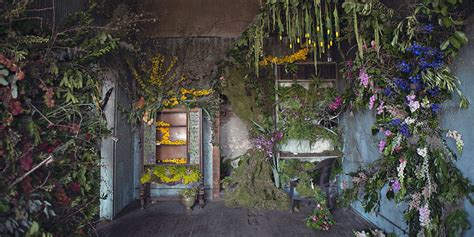 home flower take a sneak peek inside the abandoned house that s being filled with flowers