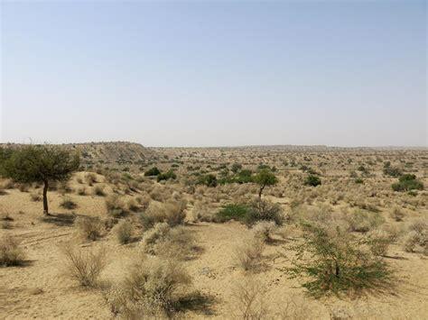 thar desert in pictures pakistan s parched thar desert al jazeera