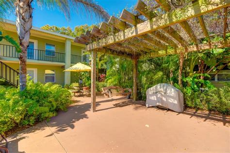 Oasis Apartments Clearwater Fl Oasis Rentals Ta Fl Apartments