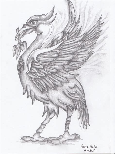 liverbird by chizzel on deviantart