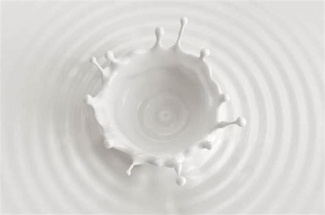 Pass the 'Milk' to make code run four times faster, say