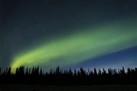 healy alaska northern lights aurora borealis near denali national park alaska