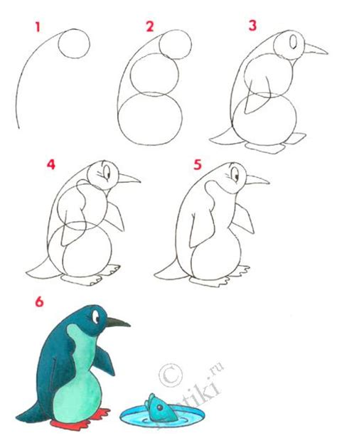 Drawing Lessons For by Cildren Drawing Lessons For A Penguin How To