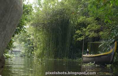 kumarakom bird sanctuary boating bird watching boating vembanadu lake kumarakom