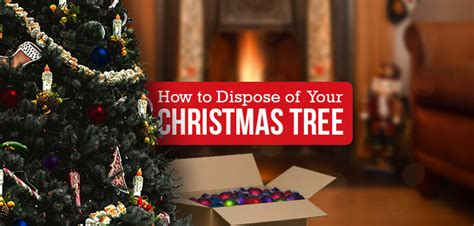 how to get rid of your christmas tree budget dumpster