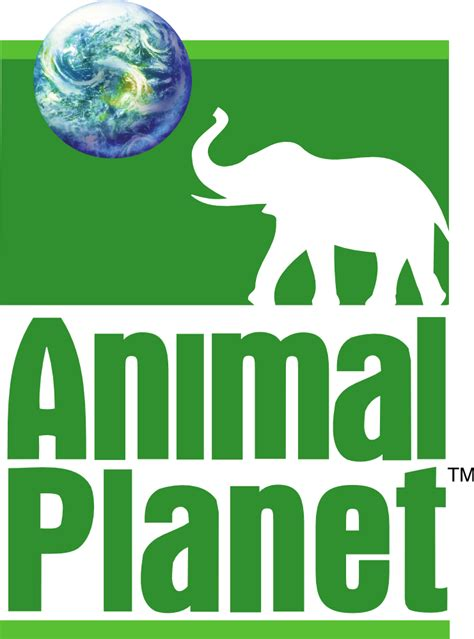 Animals Planet history of all logos all animal planet logos