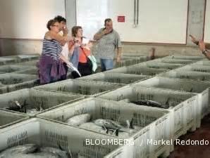 Tepung Ikan Pakan Ternak Dijual pengusaha pakan ikan bersiap menaikkan harga