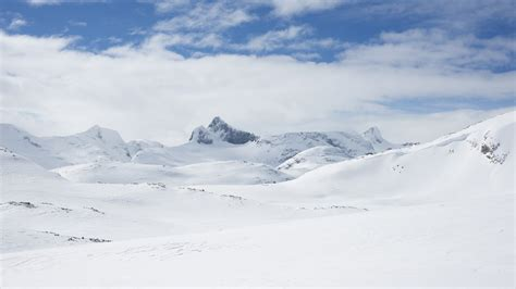 picture of snow coal dust settling on arctic snow darkens the climate picture